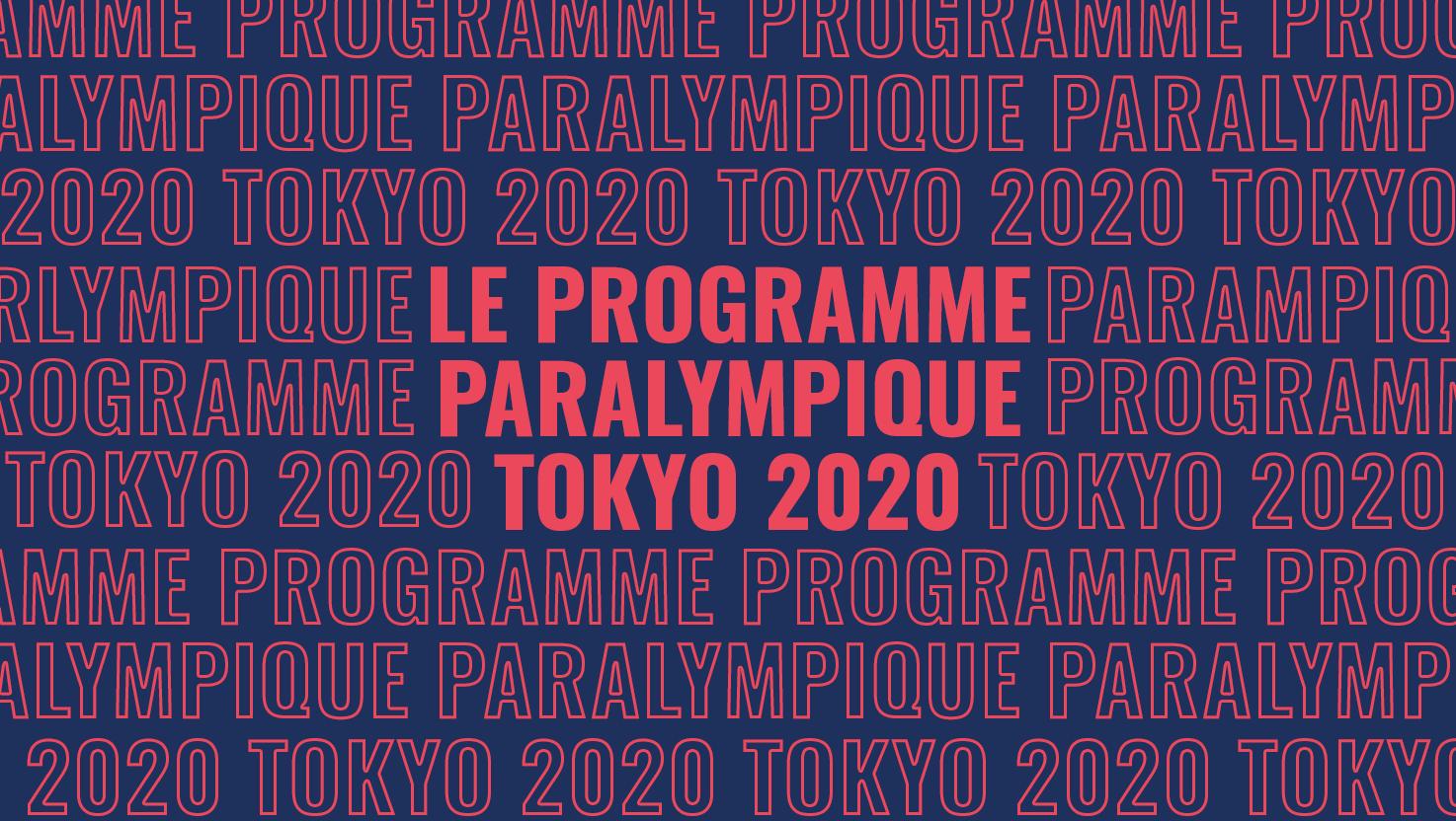 Programmeparaarticle